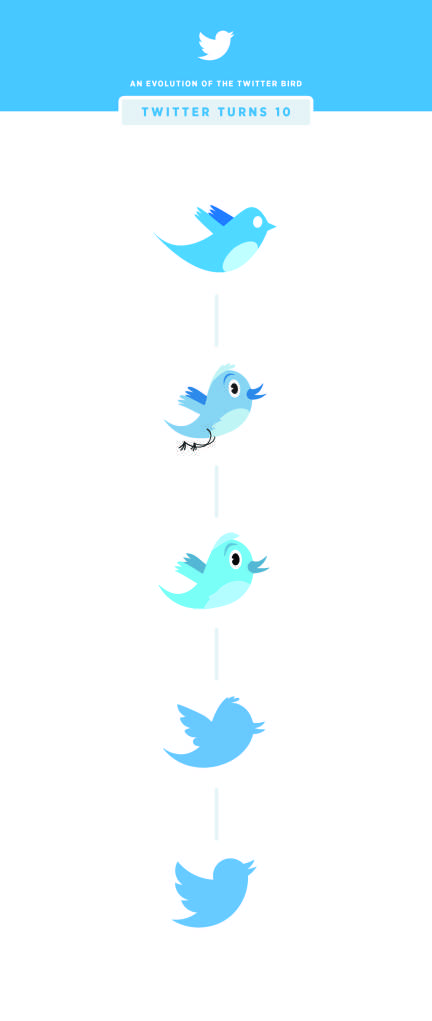 evolutionoftwitterbird